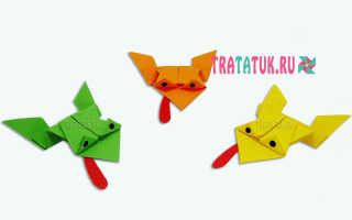 Модульные оригами лягушка для начинающих. Модульное оригами лягушка (жаба) мастер класс