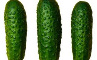 Чем полезны огурцы свежие для женщин