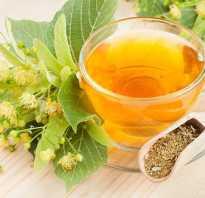 Чай из липы полезные свойства и противопоказания