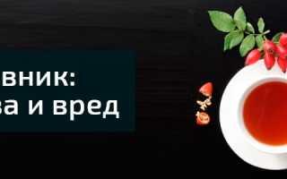 Плоды шиповника польза
