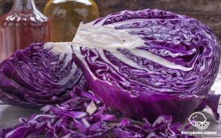 Полезные свойства капусты красной