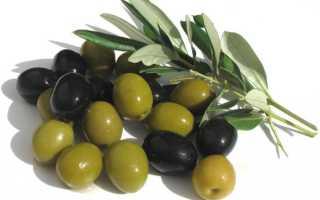 Что в маслинах полезного