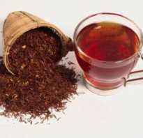 Чем полезен ройбуш чай