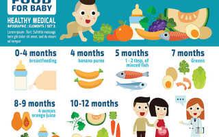 Смесь в 4 месяца при грудном вскармливании. Как вводить смесь при грудном вскармливании