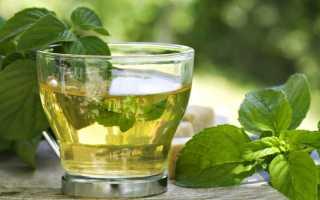 Чем полезна мята для женщин в чае