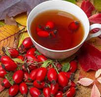 Чай с шиповником полезные свойства