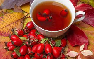 Чай шиповника польза и вред
