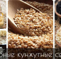 Кунжутные семечки польза и вред
