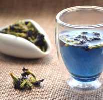 Синий чай из тайланда полезные