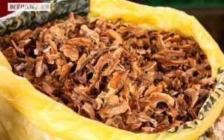 Перегородка грецкого ореха польза и вред
