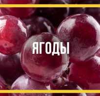 Красный виноград полезные свойства и противопоказания