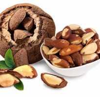Орехи бразильские полезные свойства