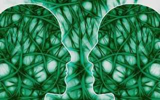 Яркий и жизнерадостный зелёный цвет: как он влияет на людей. Что означает зеленый цвет