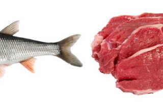 Мясо или рыба что полезнее