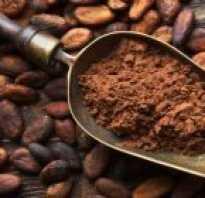 Порошок какао чем полезно
