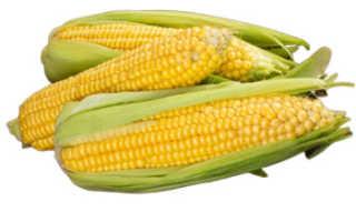 Полезна ли кукуруза