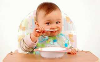 Во сколько месяцев вводить прикорм младенцу. Начинаем вводить первый прикорм грудничку