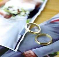 Развод по заявлению одного из супругов. Расторжение брака в судебном порядке: пошаговая инструкция
