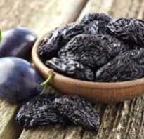 Полезные свойства чернослива для организма