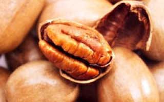 Орех пекан свойства полезные свойства