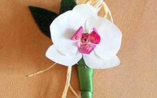 Как сделать орхидею из бумаги