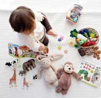 Основные методики раннего развития детей. Раннее развитие ребенка на втором году жизни