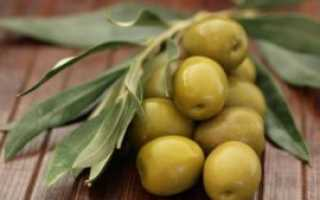 Полезны ли оливки