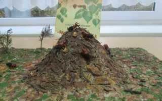 Как сделать муравейник на участке детского сада