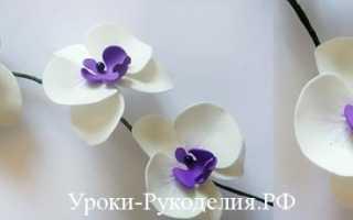 Как сделать орхидею из фоамирана мастер класс