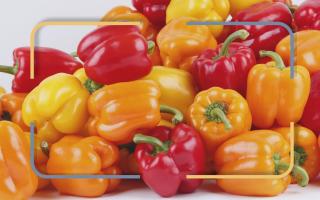 Чем полезен болгарский перец для мужчин
