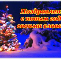 Поздравление с новым годом простыми словами. Поздравления с наступающим новым годом своими словами
