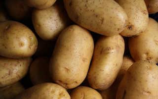 Полезна ли вареная картошка