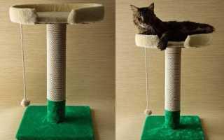 Когтеточка с лежанкой для кошек. Когтеточка своими руками. Пошаговые инструкции с фото