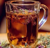 Чай чабрец полезные свойства и противопоказания