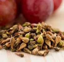 Экстракт виноградных косточек полезные свойства и противопоказания