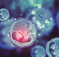 Преэклампсия во вторую беременность. Обследования и анализы. Факторы риска преэклампсии